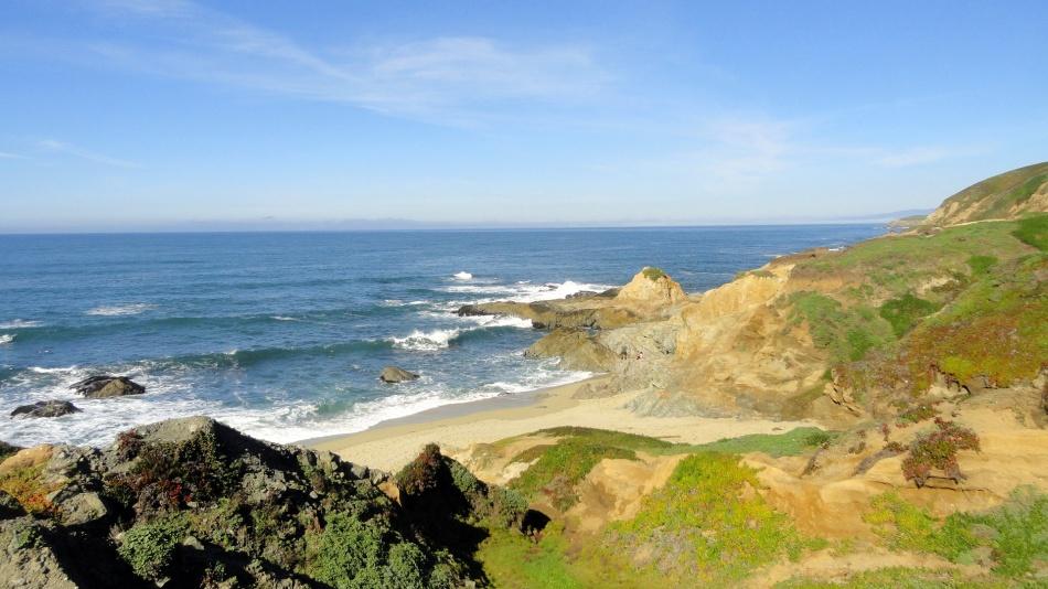 Bodega Head Coast