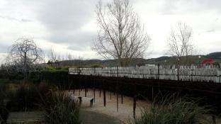 Cornerstone Garden