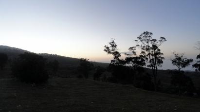Sunrise Field 1