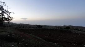 Sunrise Field 2