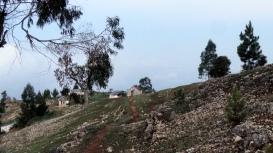 Sunrise Hillside