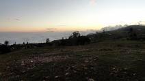 Sunset Field 5