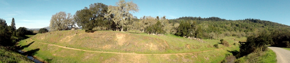 150220 Anadell Creek Pano