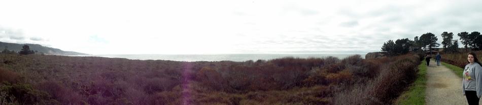 Ano Nuevo Coast Pano