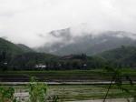 Fields on Sugnu-ChandelRoad