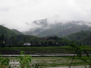 Fields on Sugnu-Chandel Road