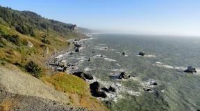 Redwood Coastline 3