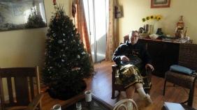 Steve & the Tree