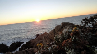 Sunset Bodega Head 2