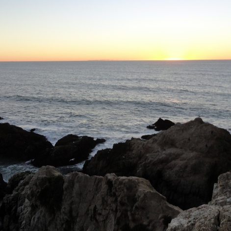 Sunset Bodega Head 4
