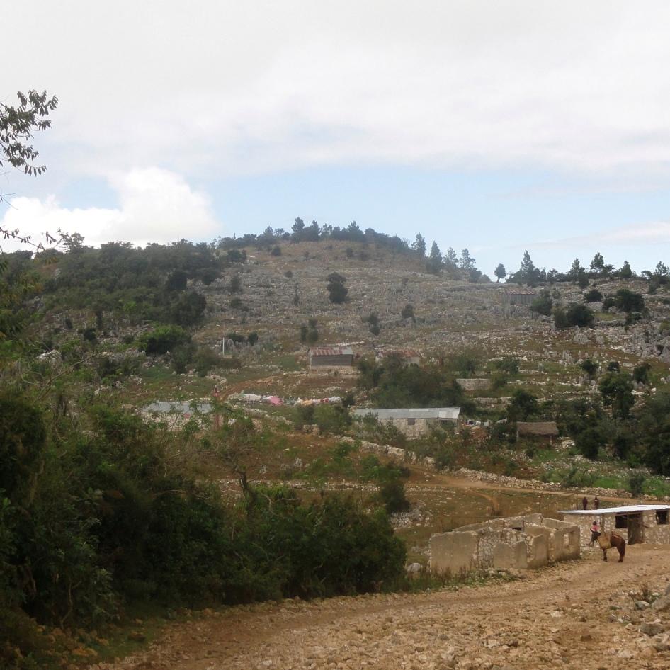 Rock-Strewn Hillside