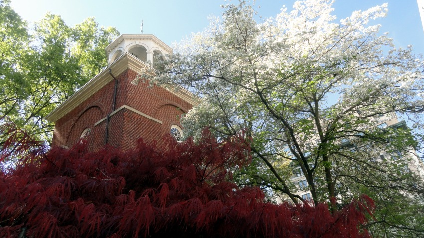 Clock Tower & Spring Foliage