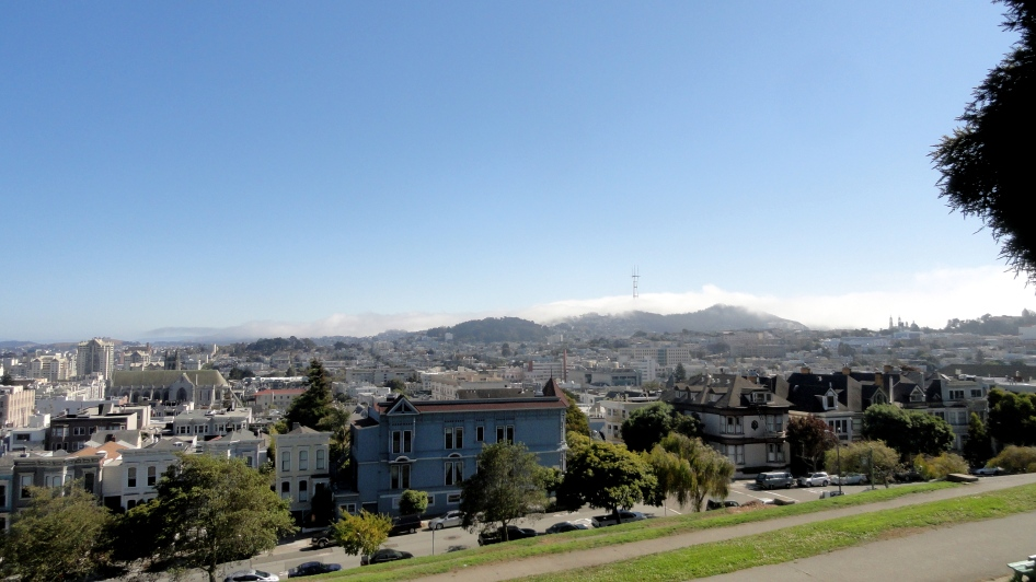 City & Twin Peaks from Alta Plaza