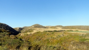 Coastal Hills Near Santa Cruz
