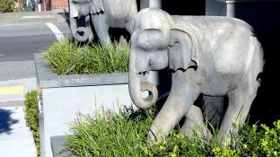 Elephant Door Guard