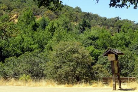 Trail Junction Annadell