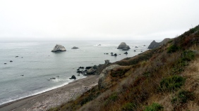 sonoma-coast-2