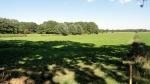 across-the-fields