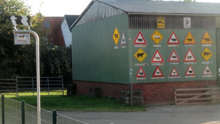 cows-crossing