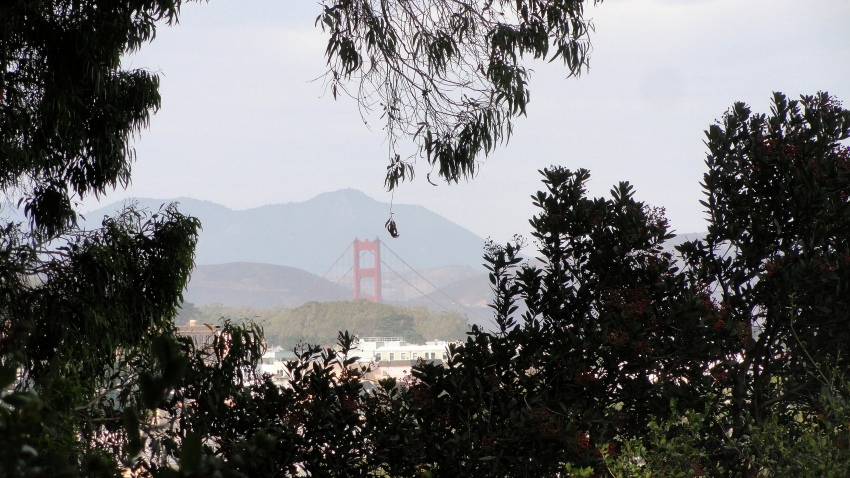 ggb-from-bv-park