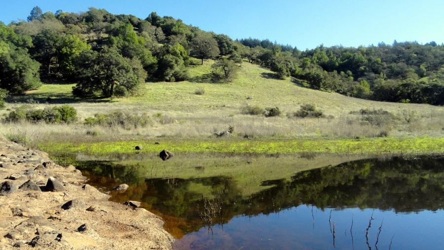 lake-hills
