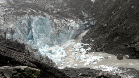 fox-glacier