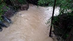 rain-rivers