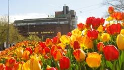 Spring in A'dam 2