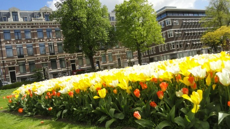 Spring in A'dam 4