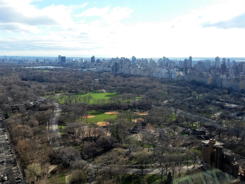 Central Park - Early Spring