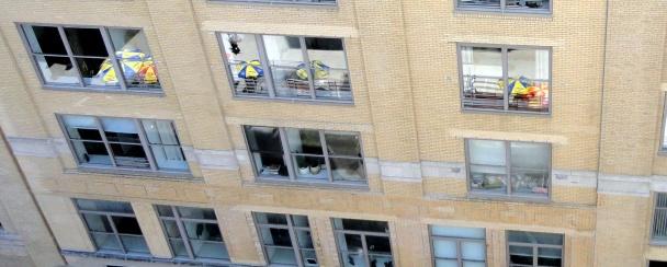 Windows of NY
