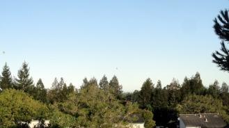 170423 Balloons Over SR