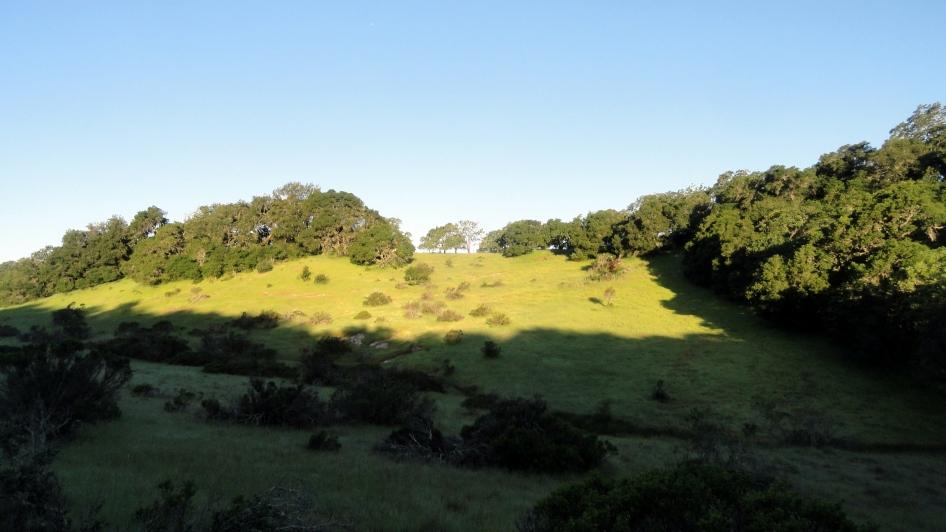 170430 Annadell Shadow & Light Hills