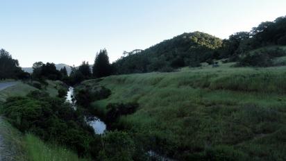 170430 Annadell Spring Creek