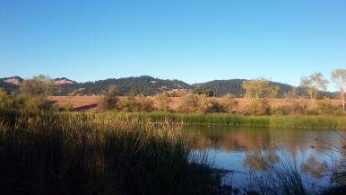 170928 Spring Lake & Hills SR 2