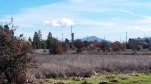 Annadel from NW City