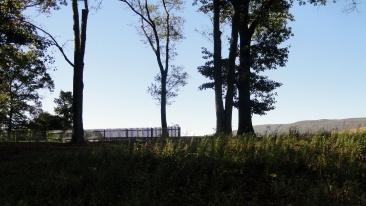 mirror fence 1