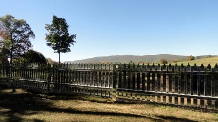 schunnemunk mtn-tree-mirror fence