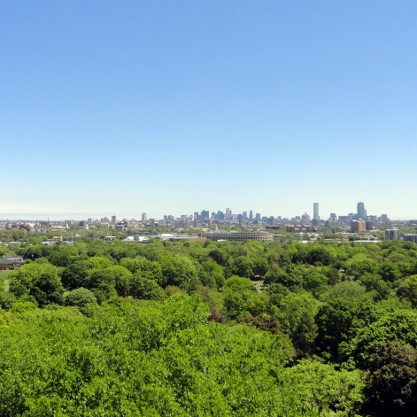 Boston Skyline from Mt Auburn Cemetery