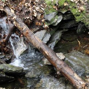 Wachusett Mtn Stream 2
