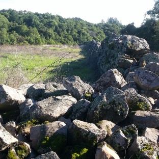 180106 Stone Fence Taylor Mtn
