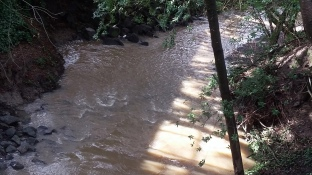 180125 Rainfilled Matanzas Creek