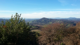 1802 N Sonoma Mtn View 4