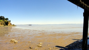 Hills-Bay-Beach at Low Tide