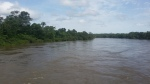 Rain Swollen River2