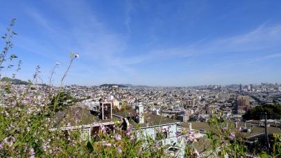 1704 Skyline & Mt Tam