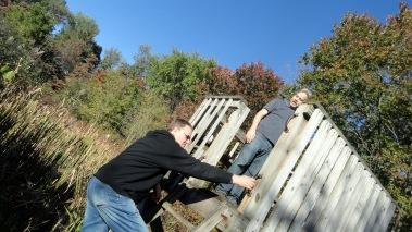 171020 Steve & Andrew Celery Farm