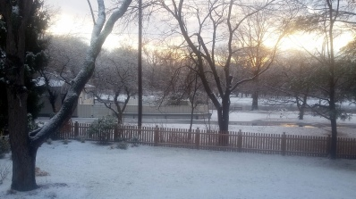1712 Snowy Morning