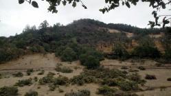 1810 Canyon Trail