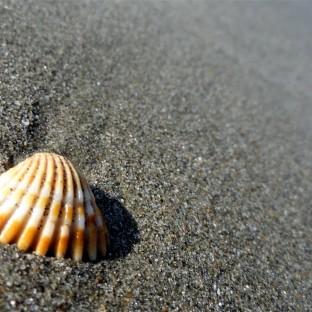 Ridges on Sand